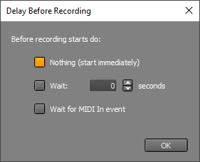 Delay Before Recording window